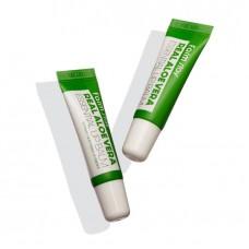 FarmStay Real Aloe Vera Essential Lip Balm Бальзам для губ с алоэ (10 мл)